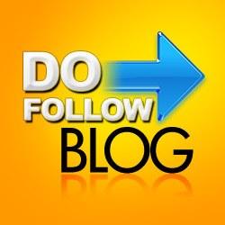 SEO Zwolle do follow blog