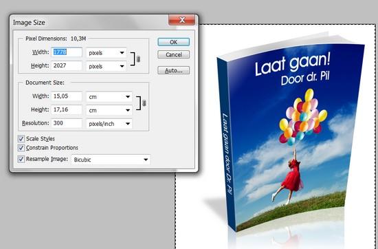 3d-cover-ebook-11