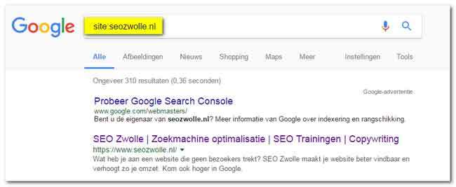Maak je website SEO-proof voor Google